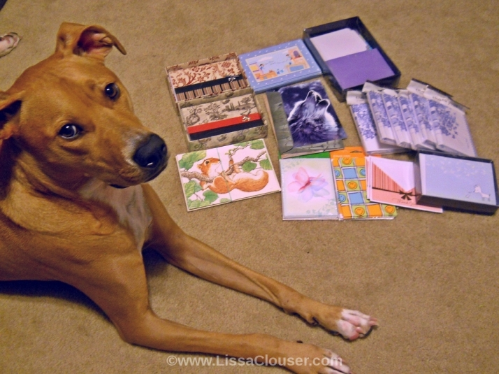 Note Cards and Dog