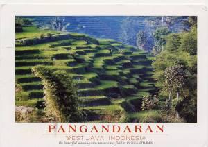 3 - Indonesia